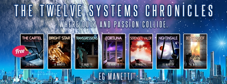 twelve systems horizontal banner2